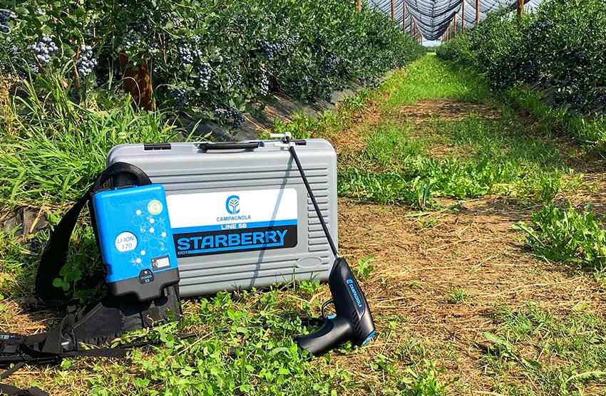 starberry-utilizzo-1
