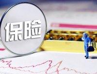 国际贸易保险中的术语有哪些?